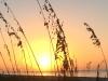 65-Sunrise